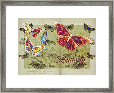 Blue Butterfly - Orange On Green - S02a Framed Print by Variance Collections