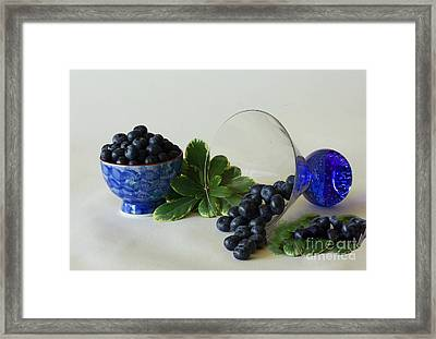 Blue By Nature Framed Print by Inspired Nature Photography Fine Art Photography