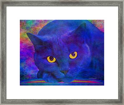 Blue Cat Ponders Framed Print