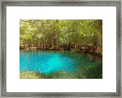 Blue Chill 1 Framed Print by Sheri McLeroy