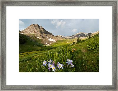 Framed Print featuring the photograph Handie's Peak And Blue Columbine On A Summer Morning by Cascade Colors