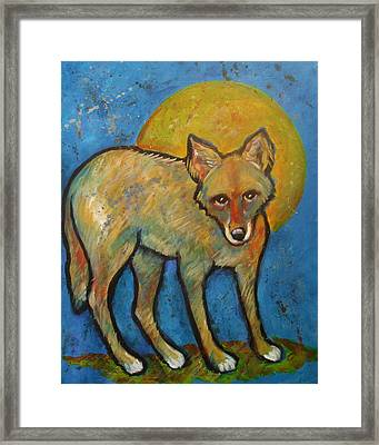 Blue Coyote And The Full Moon Framed Print