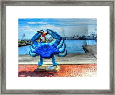 Blue Crab Framed Print by Debbi Granruth