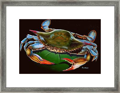 Blue Crab Open Claw Framed Print