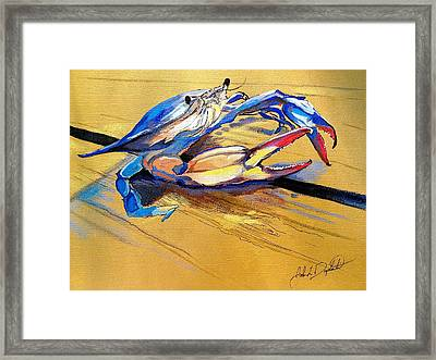 Blue Crabbie  Framed Print