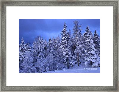 Blue Dawn Framed Print