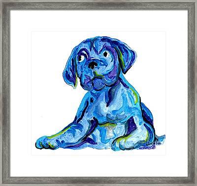 Blue Dog Framed Print