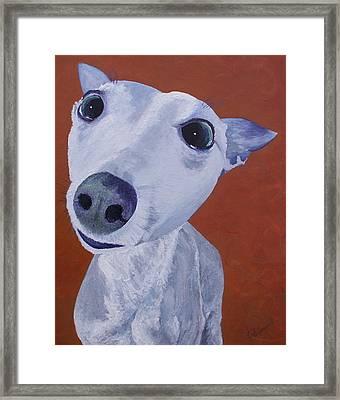 Blue Dog Framed Print by Trish Campbell