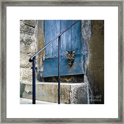 Blue Door With Pet Outlook Framed Print by Heiko Koehrer-Wagner