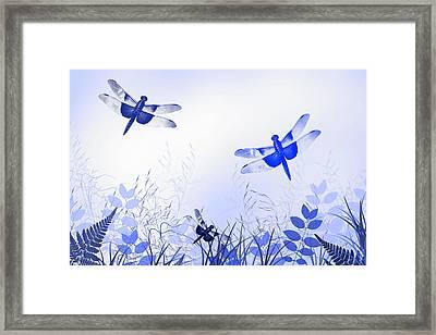 Blue Dragonfly Art Framed Print by Christina Rollo