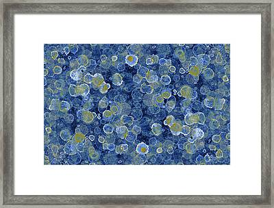 Blue Drip Framed Print