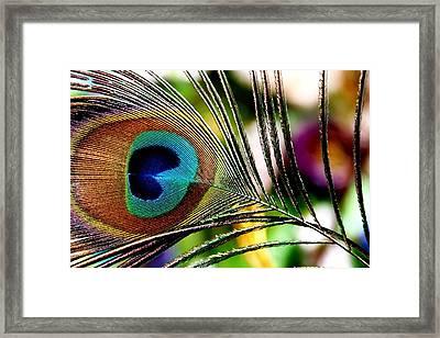 Blue Eye Framed Print by Steve Godleski