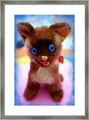 Blue Eyed Kitty Framed Print