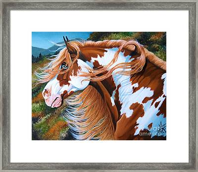 Blue Eyed Sentinel Framed Print