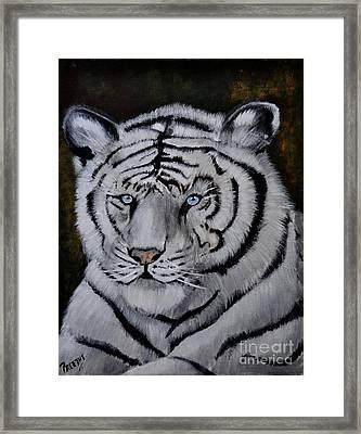 Wild Eyes Framed Print