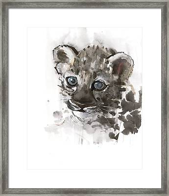 Blue Eyes Framed Print by Mark Adlington