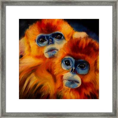 Blue Faced Monkey Framed Print
