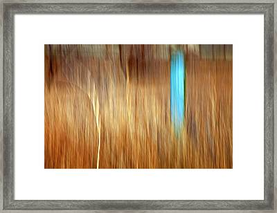 Blue Fencepost Framed Print by Theresa Tahara