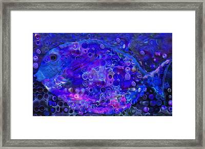 Blue Fish Framed Print by Jack Zulli