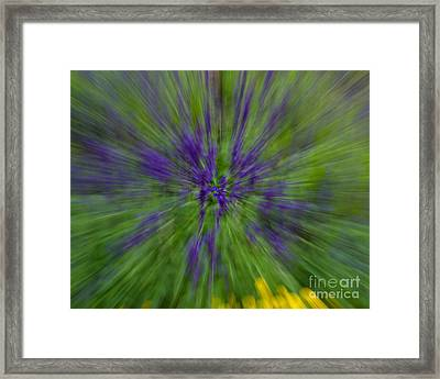 Framed Print featuring the photograph Blue Floral Blur by Dale Nelson
