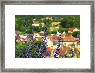 Blue Flowers And Rooftops In Sarlat Framed Print