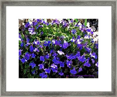 Blue Flowers On Sun Framed Print by Dr Loifer Vladimir