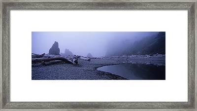Blue Fog Beach Framed Print by Elena Bouvier