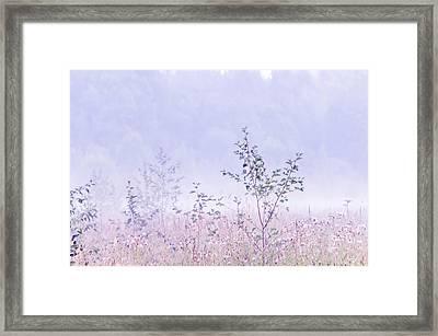 Blue Fog Framed Print