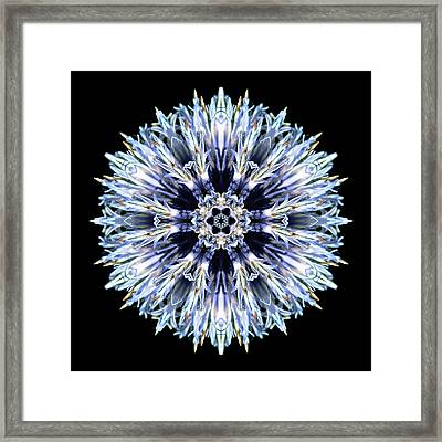 Framed Print featuring the photograph Blue Globe Thistle Flower Mandala by David J Bookbinder