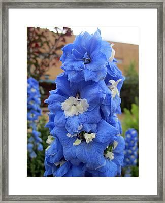 Blue Glory Framed Print by Mike Podhorzer
