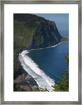 Blue Hawaii Framed Print by Kathleen Scanlan