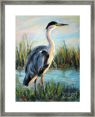 Blue Heron Framed Print by Jieming Wang