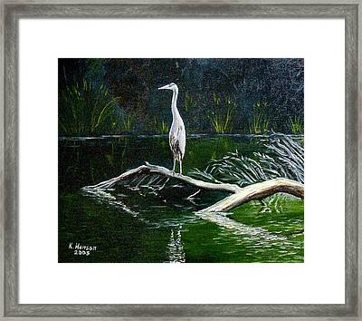 Blue Heron Framed Print by Kenny Henson