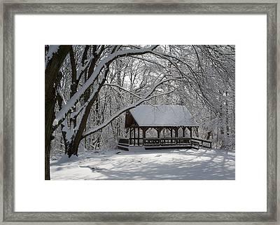 Blue Heron Park In Winter Framed Print