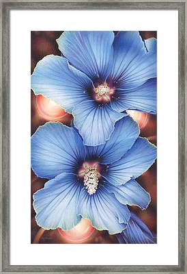 Blue Hibiscus With Fairy Lights Framed Print