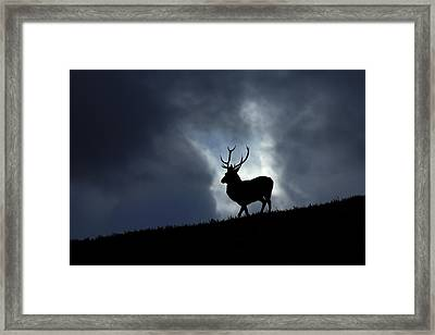 Blue Horizon Framed Print