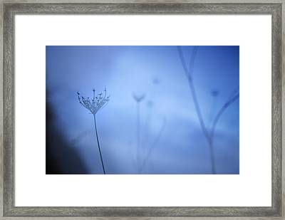 Blue Hour In The Paradise Framed Print by Guido Montanes Castillo