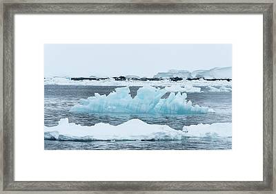 Blue Ice Floats In Neumayer Channel Framed Print