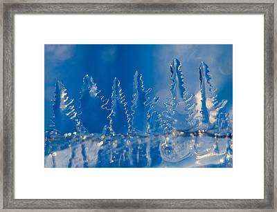 Blue Ice Forest At The Edge Of A Blue Ice Lake Framed Print