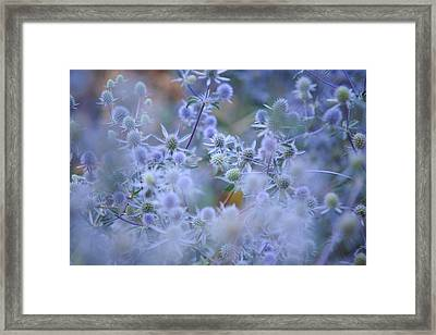 Blue Infinity Framed Print