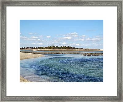 Blue In Flow Framed Print by Lynda Lehmann