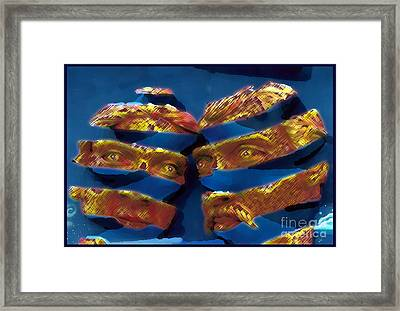 Blue In The Face Framed Print by Jack Gannon