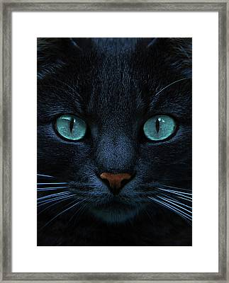 Blue Is The Night Framed Print by Joachim G Pinkawa
