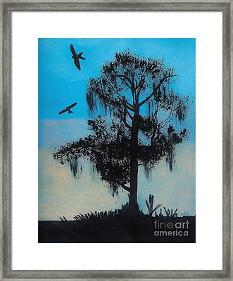 Blue Kite Sunset Framed Print