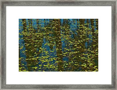 Framed Print featuring the photograph Blue Lake Reflections by Sherri Meyer