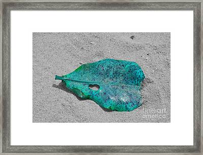 Blue Leaf Framed Print by Michelle Meenawong