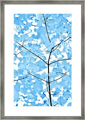 Blue Leaves Melody Framed Print