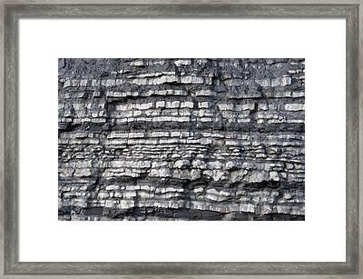 Blue Lias Strata Framed Print by Sinclair Stammers