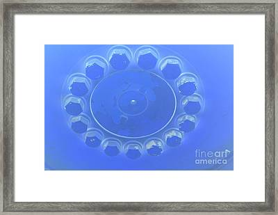Blue Lug Nuts Framed Print by Heather Kirk