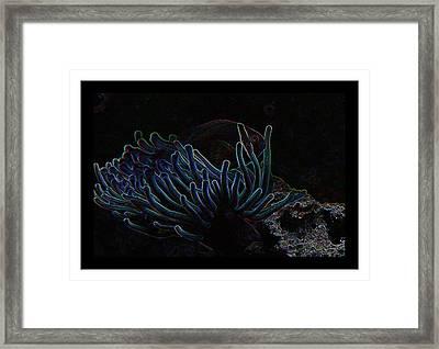 Blue Magic Light Fish  Framed Print